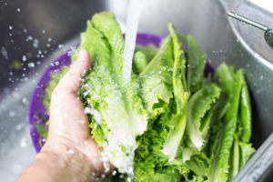 Are Your Veggies Are Really Kosher?