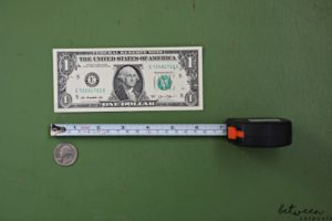 Stuck Without a Ruler? Here's How to Measure. Bet you didn't realize that the solution to measuring without a ruler is right there in your wallet.